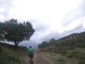 Languedoc okt 2012 130